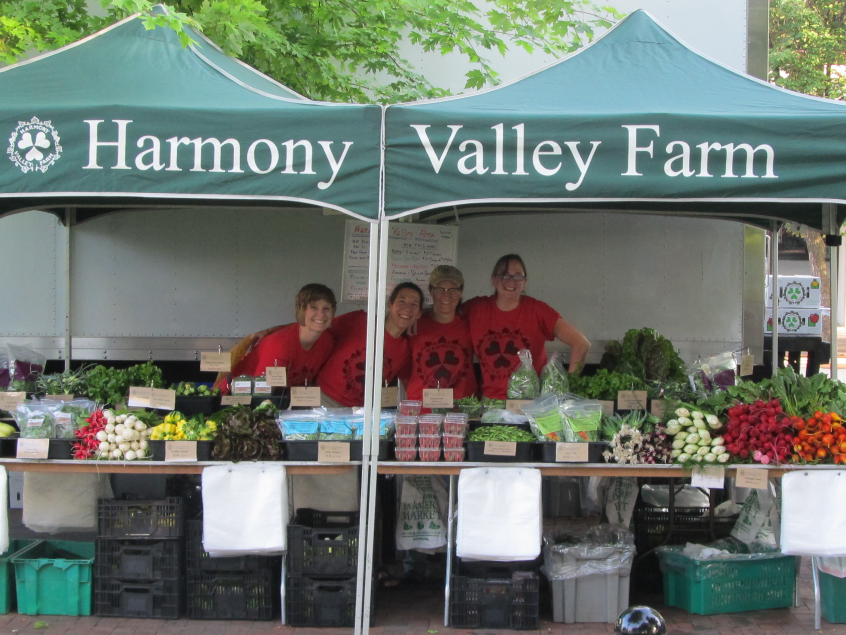 HVF Market Stand workers